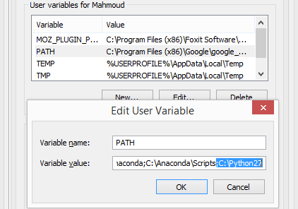 python environment variable
