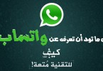 All About WhatsApp